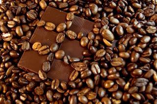 Quels sont les pays producteurs de cacao ?